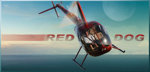 Red Dog Helicopters Orlando Sentinel Photos by Red Huber Photographer